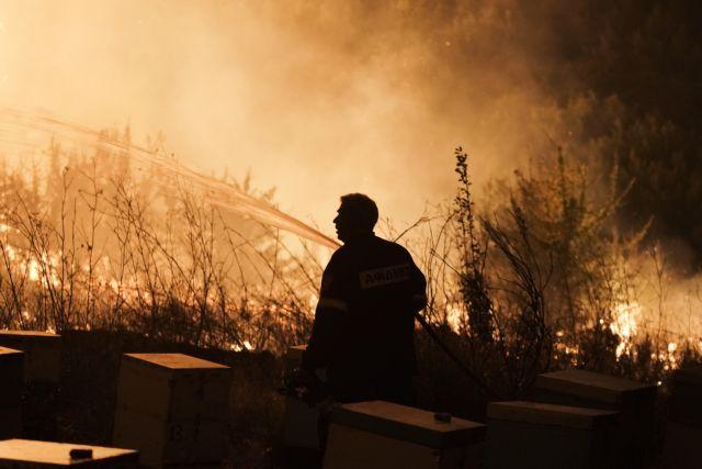 φωτιες πυροσβεστης